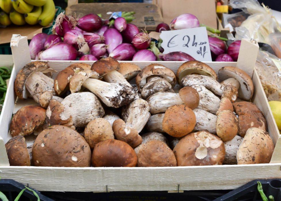 Cortona market