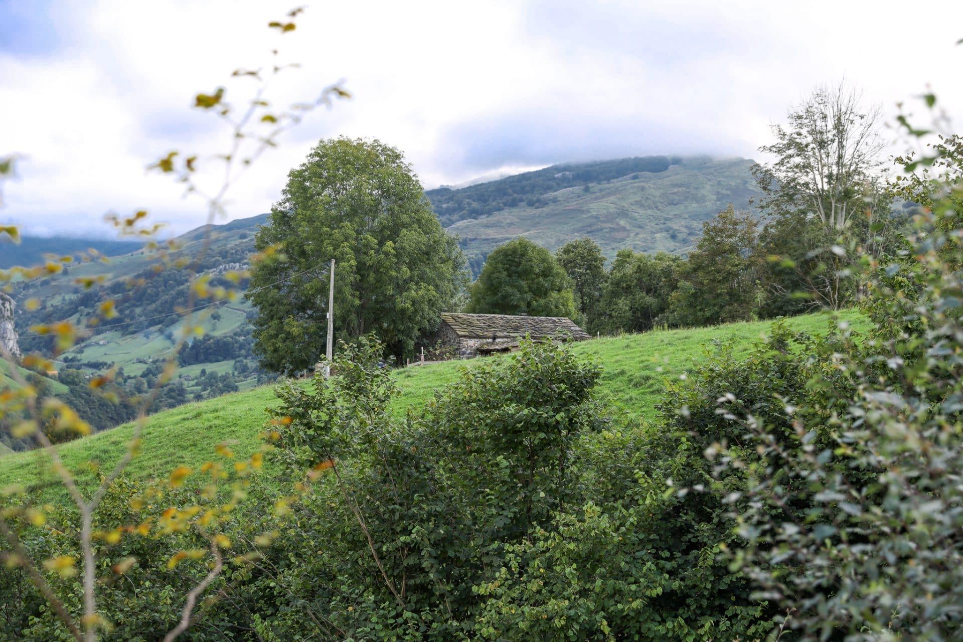 Cabañas Cantabria
